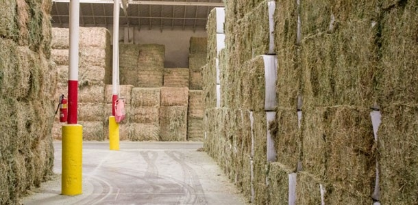 Hay Stacked for Export - Long Beach, CA