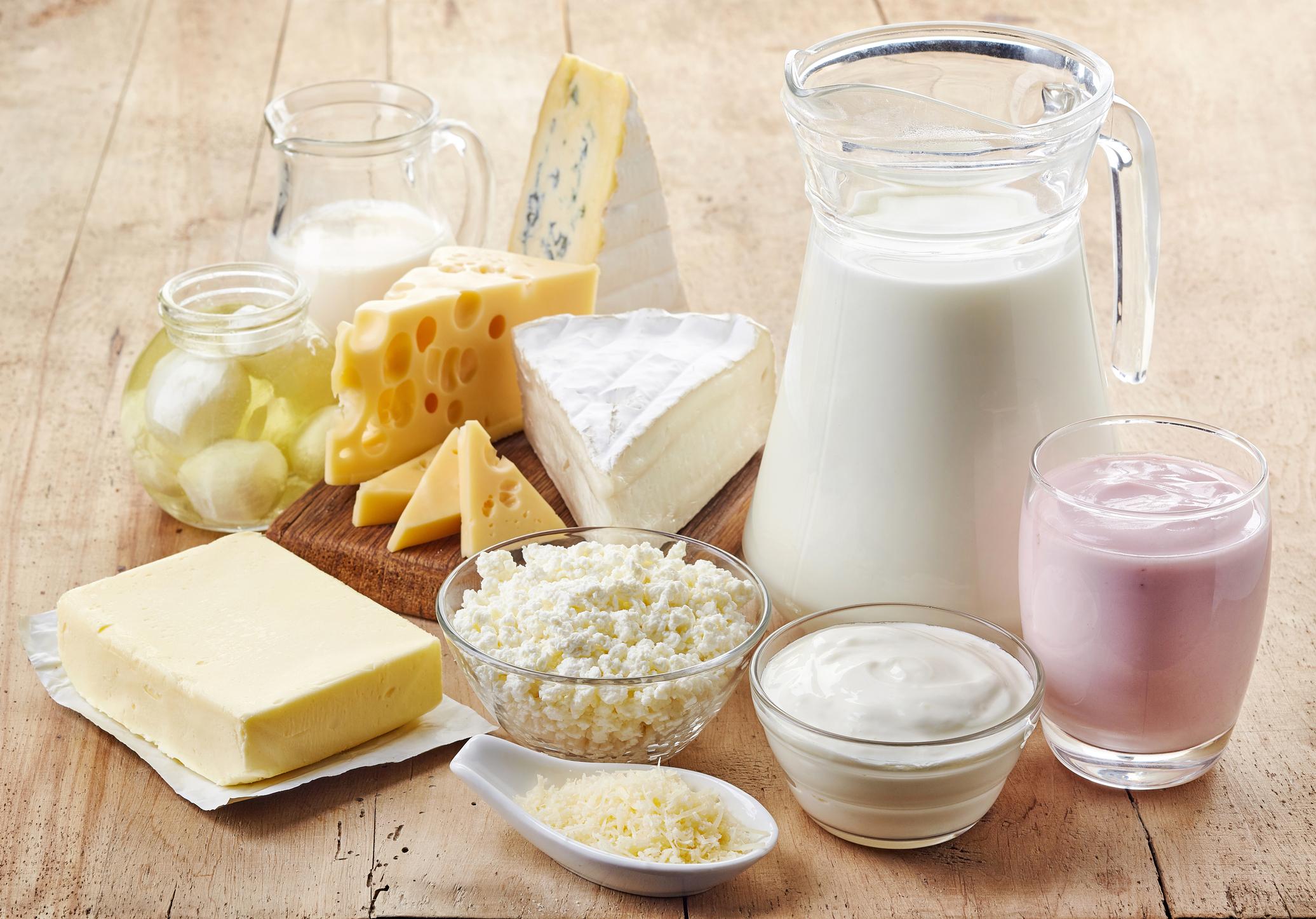 Resultado de imagen de milk & dairy industry